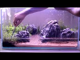 Nature Aquarium Setup. Part Two, Plants - YouTube How To Set Up An African Cichlid Tank Step By Guide Youtube Aquascaping The Art Of The Planted Aquarium 2013 Nano Pt1 Best 25 Ideas On Pinterest Httpwwwrebellcomimagesaquascaping 430 Best Freshwater Aqua Scape Images Aquascape Equipment Setup Ideas Cool Up 17 About Fish Process 4ft Cave Ridgeline Aquascape A Planted Tank Hidden Forest New Directly After Setting When Dreams Come True