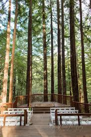 Santa Cruz Summit Christmas Tree Farm by Best 25 Santa Cruz Events Ideas On Pinterest Vintage Volkswagen