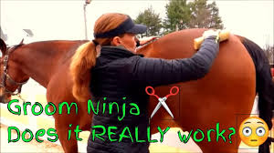 Dog Horse Shedding Blade by Groom Ninja Shedding Tool Product Review Youtube