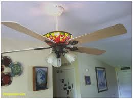Panasonic Ceiling Fan Humming Noise by Ceiling Fan Buzzing Sound Integralbook Com