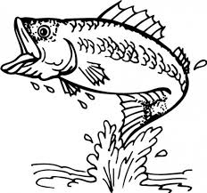 Bass Fish Coloring Pages