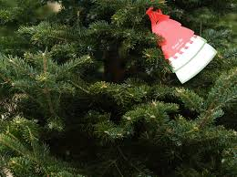 Frasier Christmas Tree by Hottytoddy Com Holiday Marketplace To Be Held Dec 3 At The