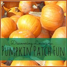 Ms Heathers Pumpkin Patch Louisiana discovering louisiana pumpkin patch fun my big fat happy life