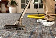 stanley steemer carpet and floor cleaning in stanley steemer