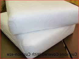 Replacement Sofa Pillow Inserts by Best Replacement Foam Sofa Cushions Okaycreations Net