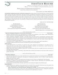 Information Technology Resume Examples 2016 It Director Samples Of T