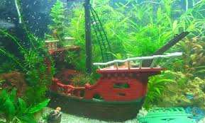 best sunken ship aquarium decorations for shipwreck theme