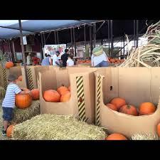 Pumpkin Patch Power Rd Mesa Az by Fall Festival At The Vertuccio Farms Jmc 305 Youtube