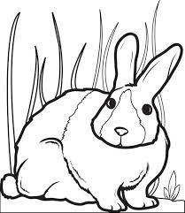 Printable Bunny Rabbit Coloring Page For Kids