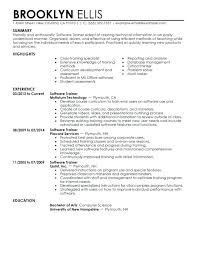 Information Technology Resume Sample Amazing It Examples Software Training Medium Manager 2016