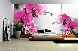 fototapete fototapeten tapete tapeten poster orchideen