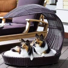Wayfair Dog Beds by Best 25 Outdoor Dog Beds Ideas On Pinterest Winter Dog House