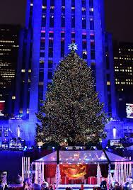 Rockefeller Plaza Christmas Tree Lighting 2017 by Last Year U0027s Rockefeller Center Tree Lives On As Upstate Home New