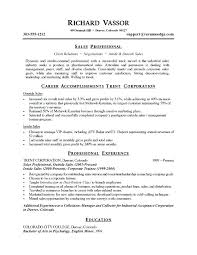 Resume Sample Summary Top Objective Examples For Professional