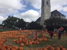 Pumpkin Patch Austin Tx 2015 by Pumpkin Patch 2017 St James Episcopal Church