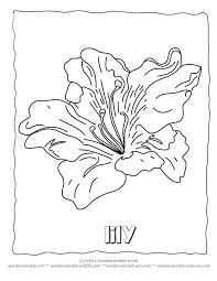 Flower Coloring Sheets LilyFree Printable Pages