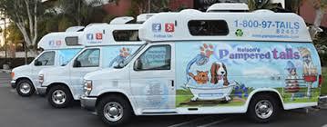 mobile cat grooming mobile pet groomers cat grooming los angeles ca
