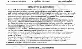 Sample Resume For Bank Po Jobs With No Experience Elegant Mba Aspirant