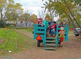 Pumpkin Picking Nj Near Staten Island by Pumpkin Picking At Decker Farm On Staten Island