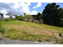 REAL Property Kerikeri - Buy Or Sell Real Estate In Kerikeri Archie Eats Kings Plant Barn Archies Journal By Michael Ngariki Garden Design Cafe Henderson Aucklandnzcom Daniels Wood Land On The Set For Redwood Kippen Home Facebook Youtube Monthly Gardening Checklist December