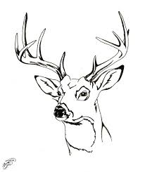 Deer Hunting Coloring Pages Free Animals Whitetail Head Full Size