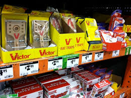 top home depot mouse traps on building a better mouse trap for