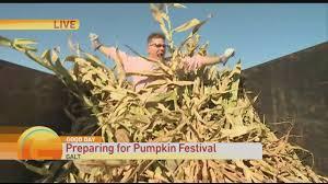 Giant Pumpkin Festival Elk Grove by Cornstalk Cutting Youtube