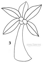 Drawn palm tree easy draw 3