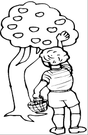 Le Orchard Colouring Pages Apple Coloring Page Picking