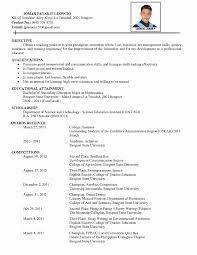 Curriculum Vitae Computer Skills Resume And Interests Examples Hobbies Your Cv 100 Original