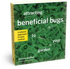 Attracting Insects To Your Garden by Attracting Beneficial Bugs To Your Garden A Natural Approach To