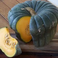 Organic Pumpkin Seeds Australia by Seed Vegetables P S Pumpkin