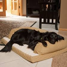 Coolaroo Dog Bed Large by Exterior Cozy Dark Coolaroo Dog Bed With Gray Bedding