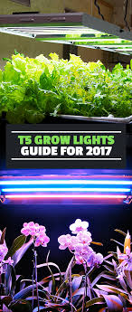 t5 grow lights guide for 2017