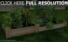 Greenes Fence Raised Garden Bed by Raised Vegetable Garden Beds Amazon Home Outdoor Decoration