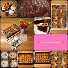 aprikosen schoko nuss kuchen vom blech marillenkuchen