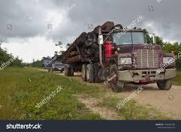 100 Old Mack Trucks Spanish Lookout Belize September 22 2018 Stock Photo Edit
