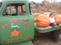 Oak Glen Pumpkin Patch Yucaipa by Best Pumpkin Patches And Farms In San Diego