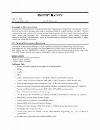 It Technical Support Resume Sample Amazing Summary For A Resum Examples Qualifications