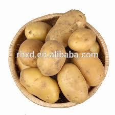 Wholesale Potatoes Fresh 20kg Bags Price