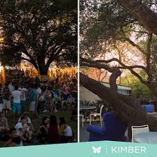 100 Kimber Modern Twitter