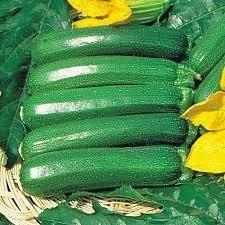 Varieties Of Pumpkins Uk by Pumpkin Squash U0026 Courgette Seeds Thompson U0026 Morgan