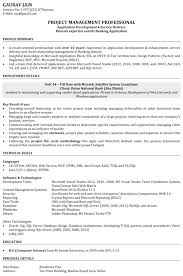Resume Format For 2 Years Experienced Software Testing Engineer Samples Sample Application Development