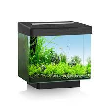 aquariums juwel à prix discount en vente akouashop