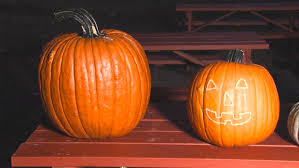 Fargo Moorhead Pumpkin Patches by Buffalo River Pumpkin Patch Begins 14th Year Wday