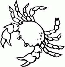 Coloring Pages For Adults Printable Sea Creatures New In Remodelling Animal