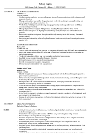 Download Sales Director Resume Sample As Image File
