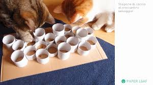 12 accessoires pour chiens et chats à fabriquer soi même