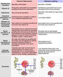 pth normal range uk hypoparathyroidism uk