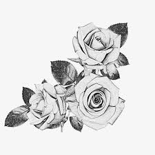 100 Meaningful Rose Tattoo Designs